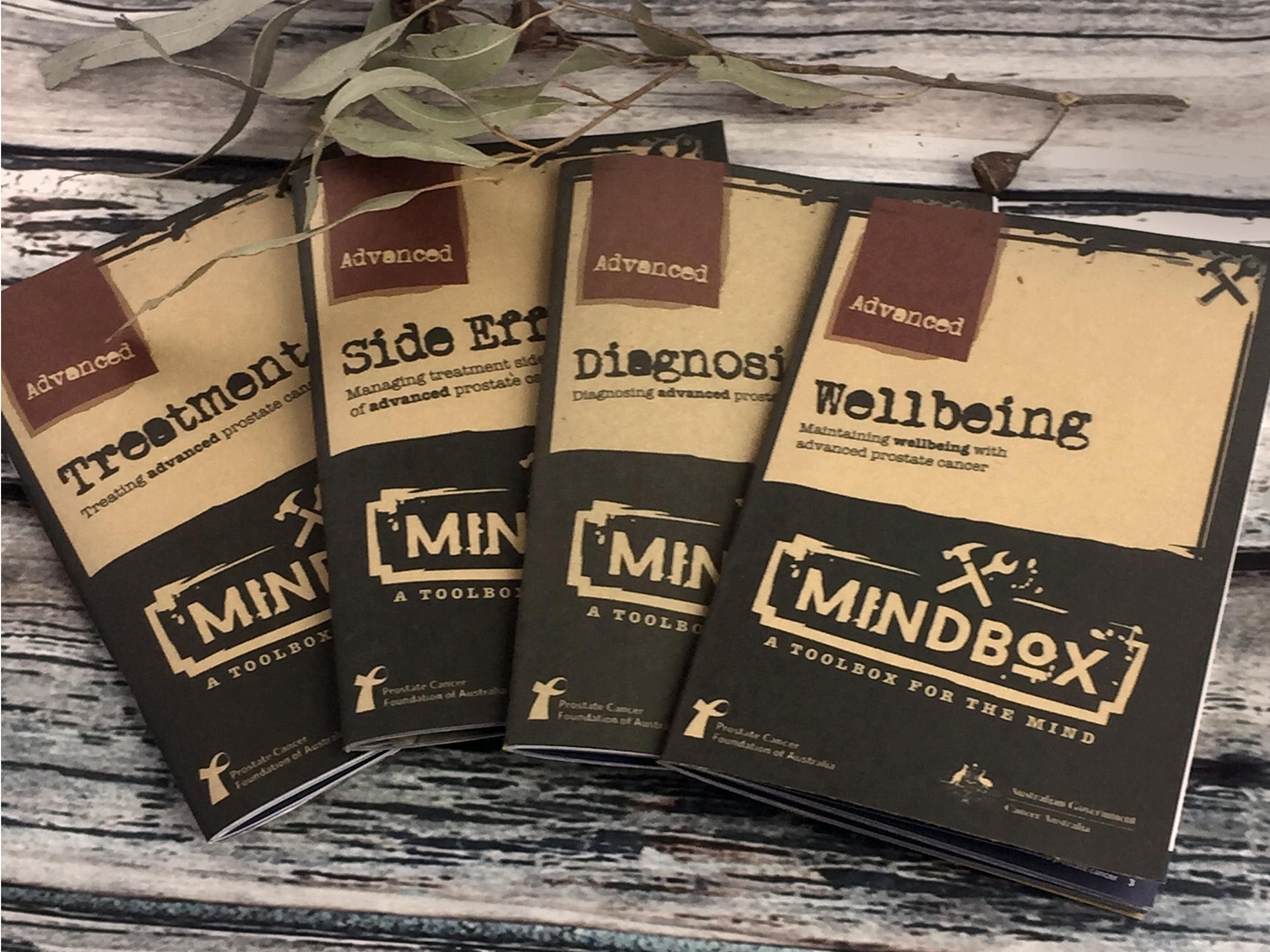 Mindbox - Branding and logo