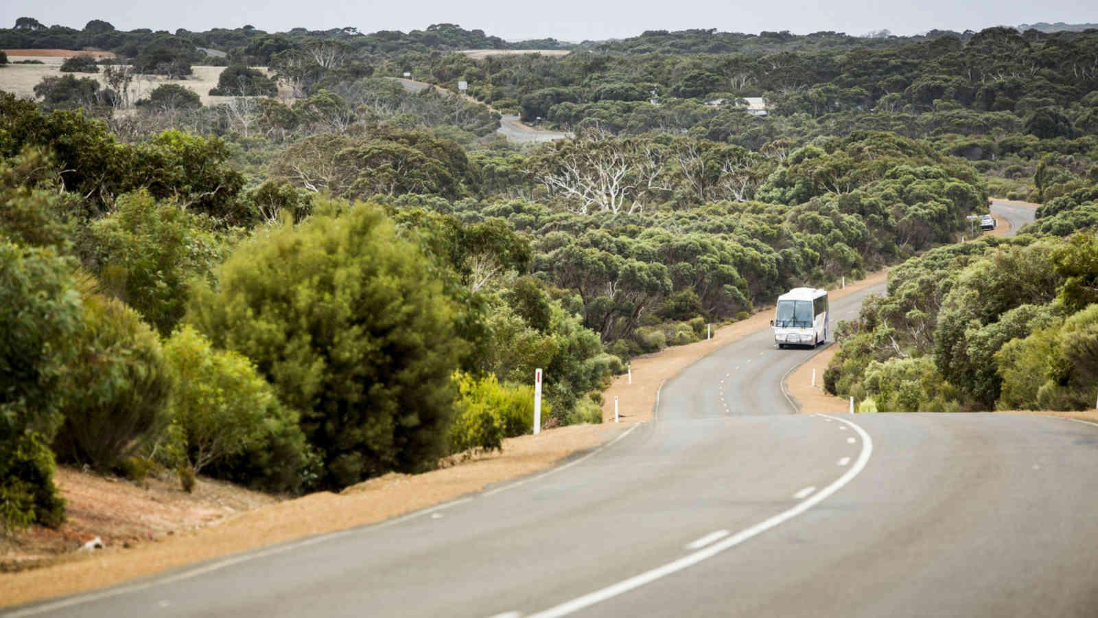 Kangaroo Island Coach