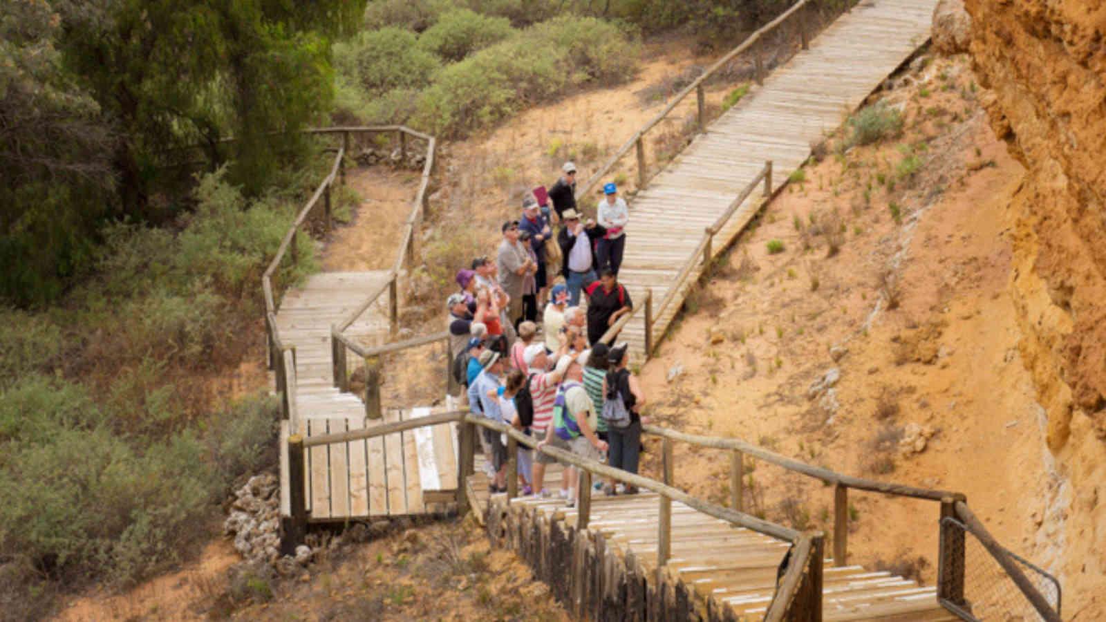 Ngaut Ngaut Aboriginal Park Walk 2