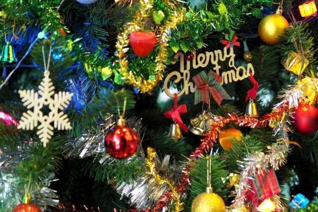Branch Celebration Christmas 264995