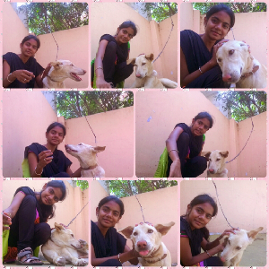 pet minder avatar photo Sneha