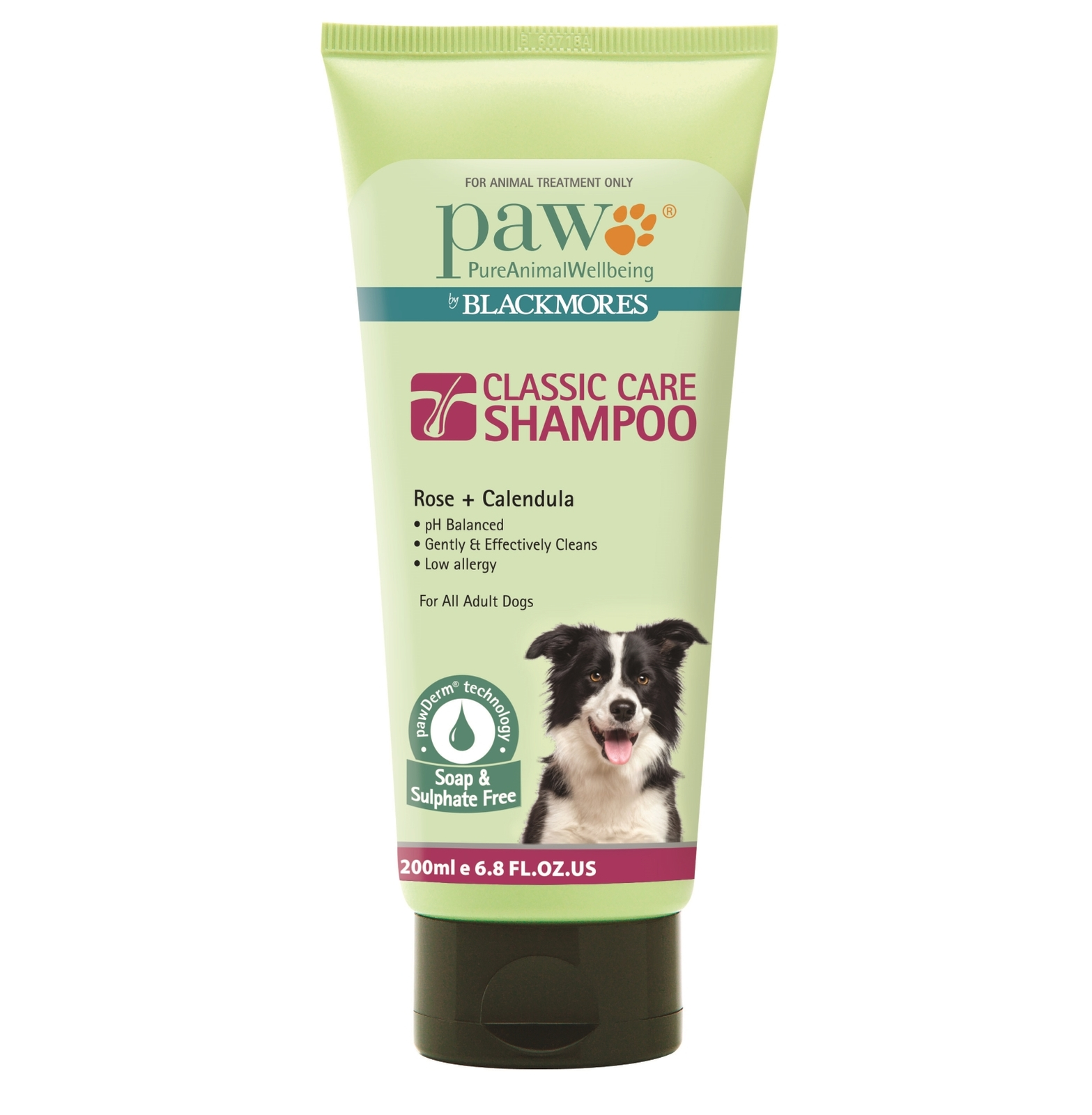product sample PAW Classic Care Shampoo