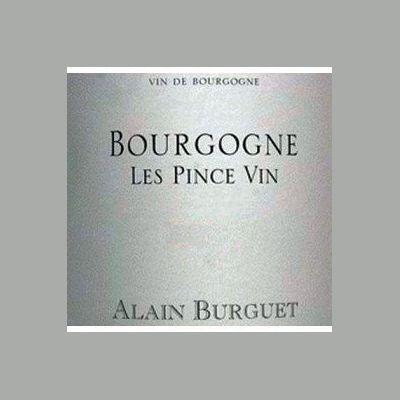 Domaine Alain Burguet Bourgogne 2012