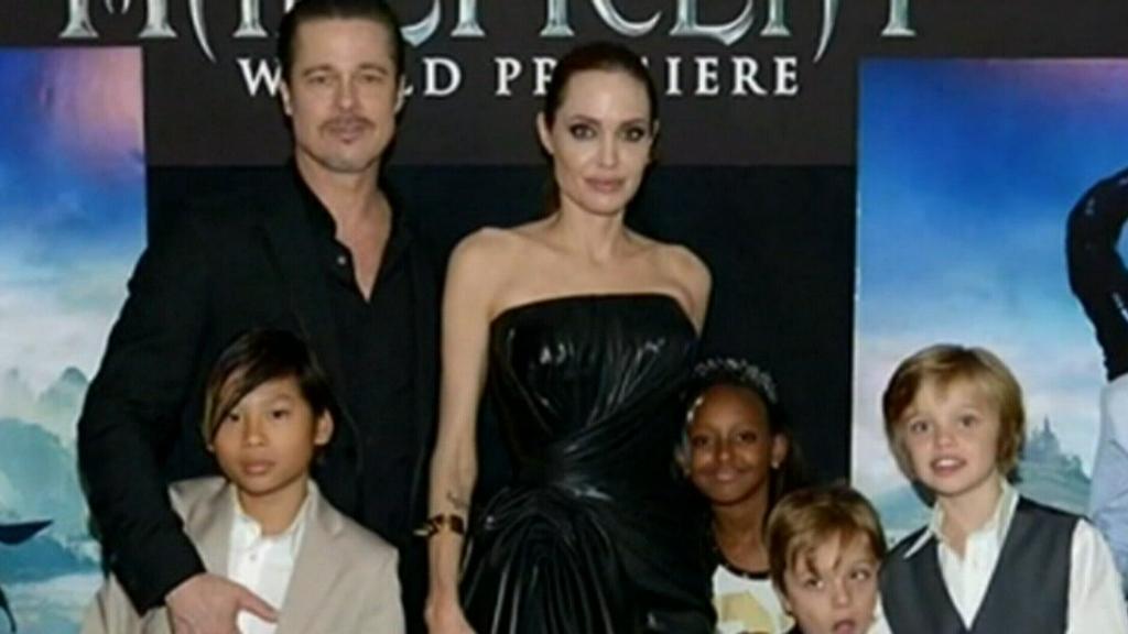 Brad Pitt to fight for  shared custody of six children