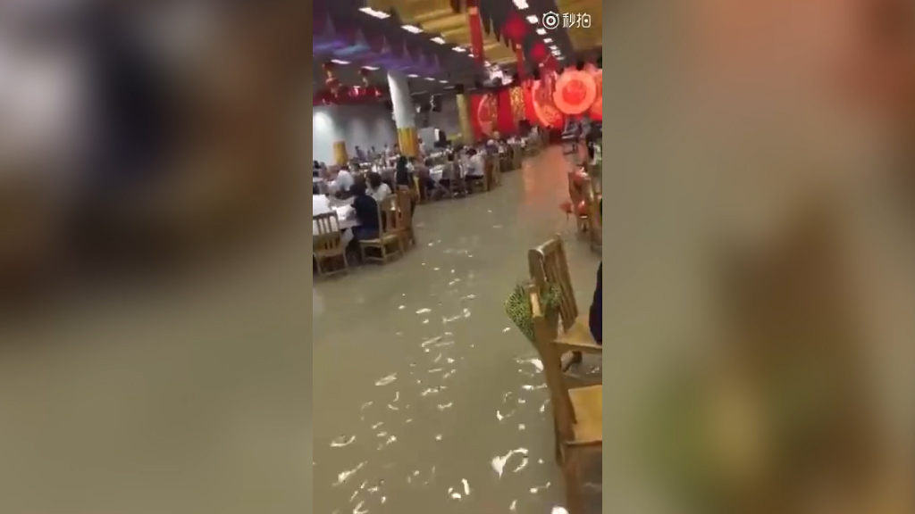 Newly married couple don't let flood waters ruin their wedding reception