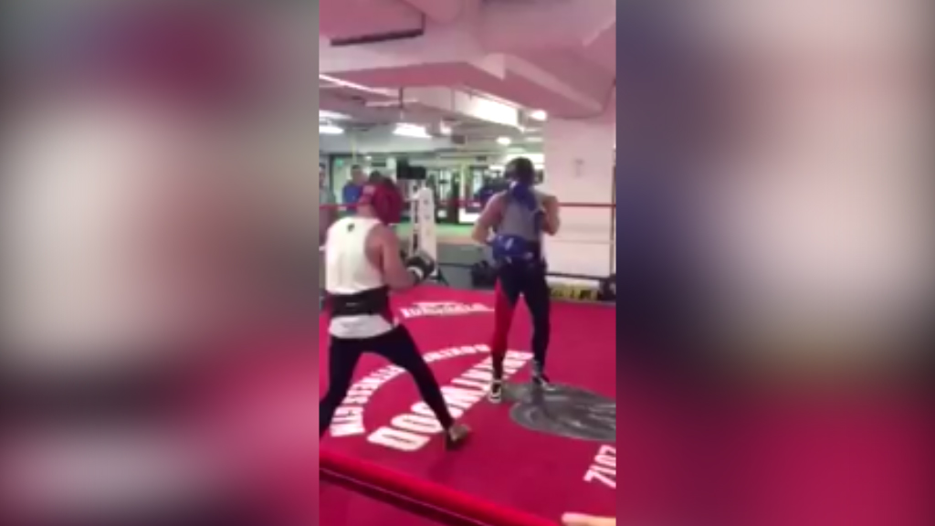 McGregor spars in lead up to Mayweather bout