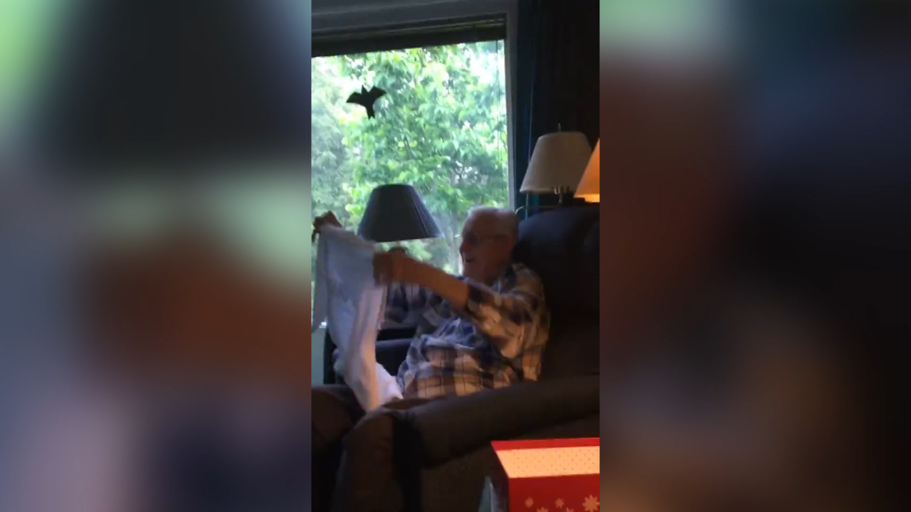 Grandpa's adorable reaction to some exciting news