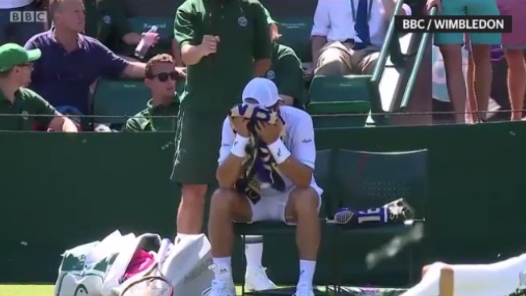 Flying ants invade Wimbledon