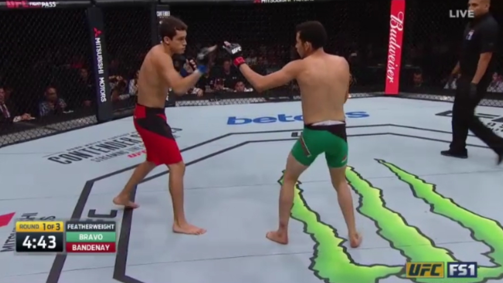 Peruvian underdog wins UFC debut