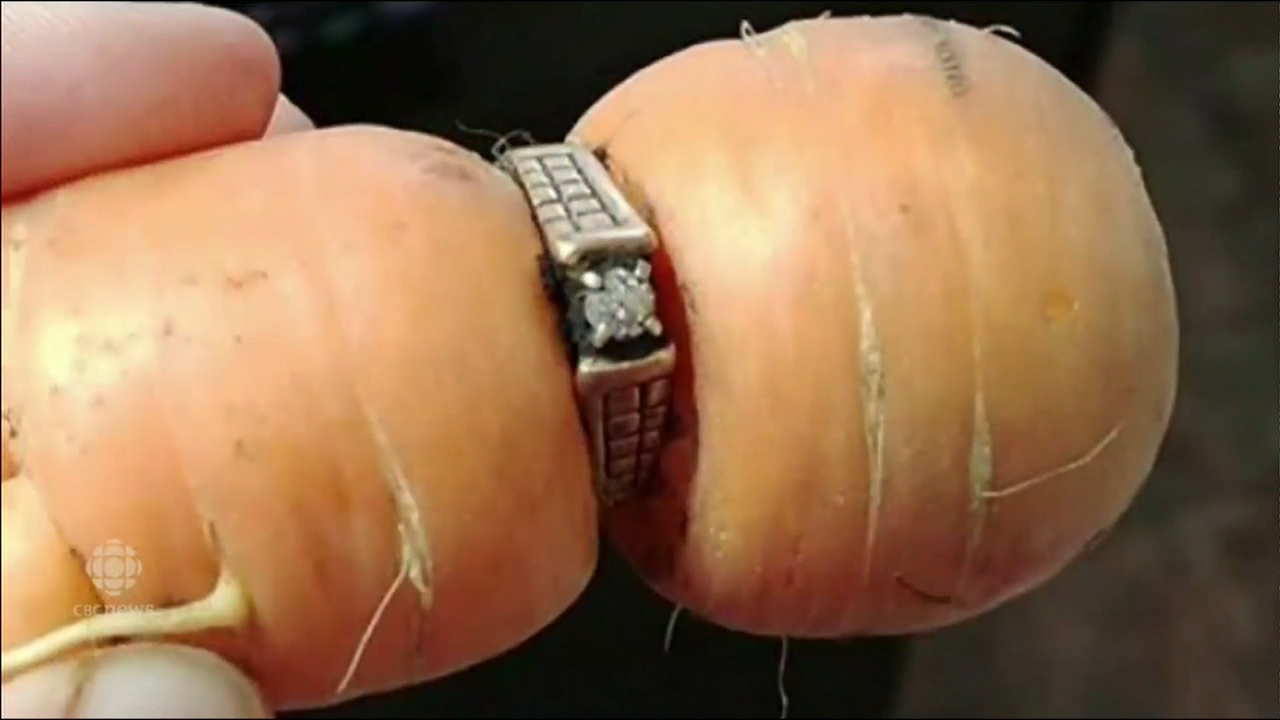 Women finds lost engagement ring on carrot
