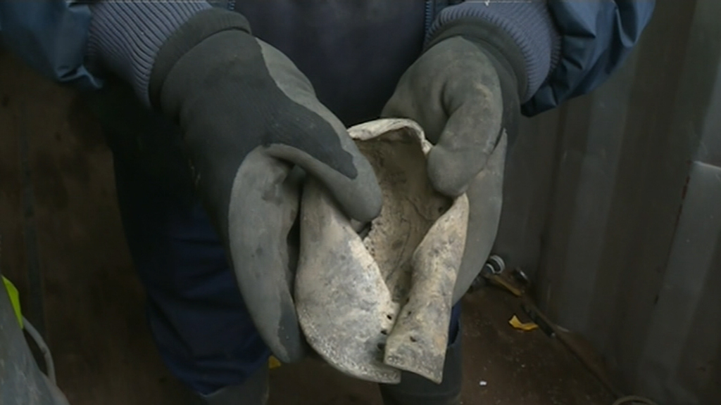 Leather shoe of boy missing 42 years found in Victoria