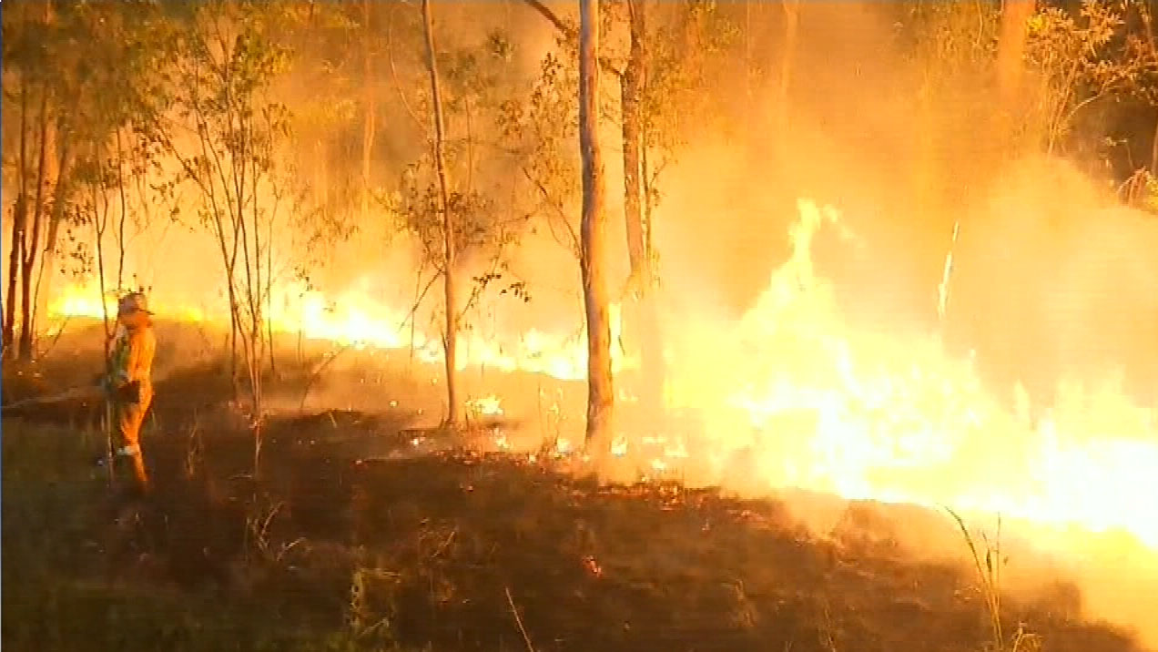 Bushfire forces residents from homes on Sunshine Coast