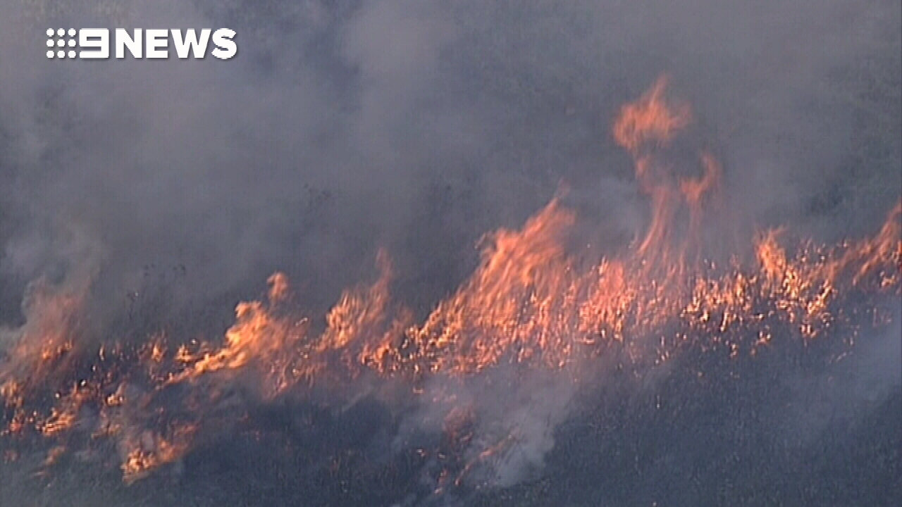 Firefighters tackle grass fire in Sydney's south