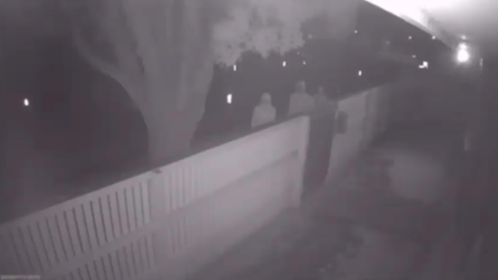 Alleged robbers are caught on CCTV