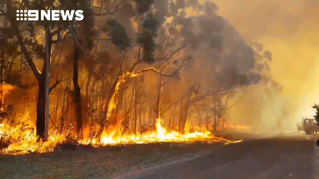 Bushfire burns out of control near Nowra