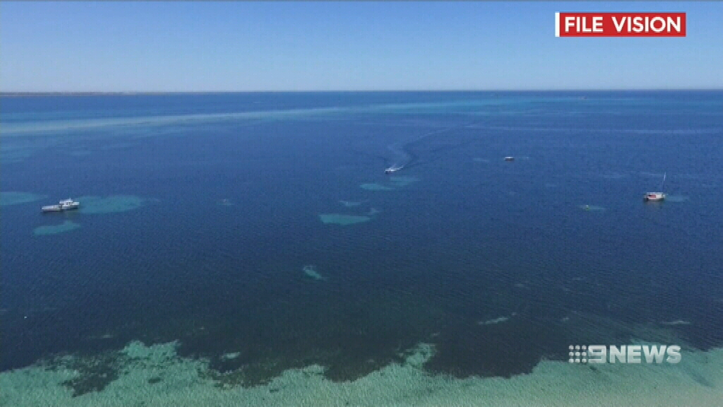 Diver swept out to sea swims 7.5km to safety