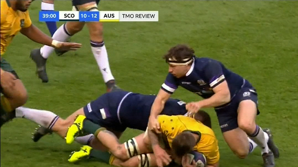 Wallabies hammered by Scotland