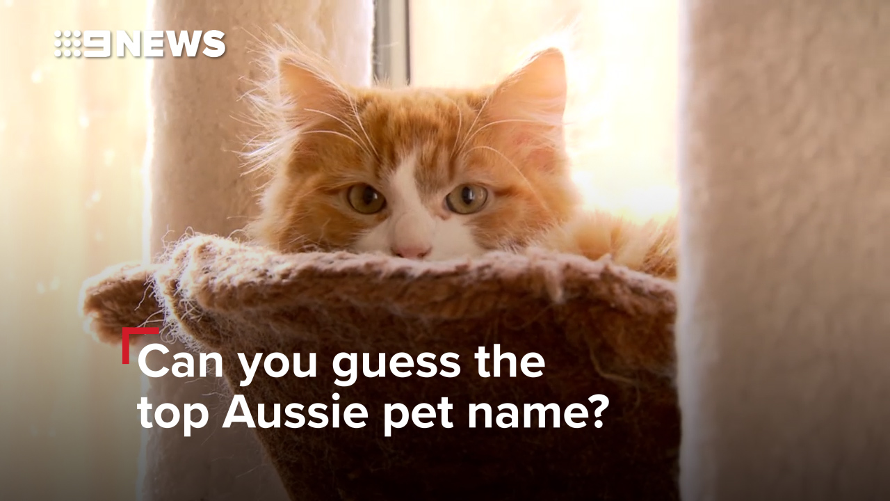 Can you guess the top Aussie pet name?