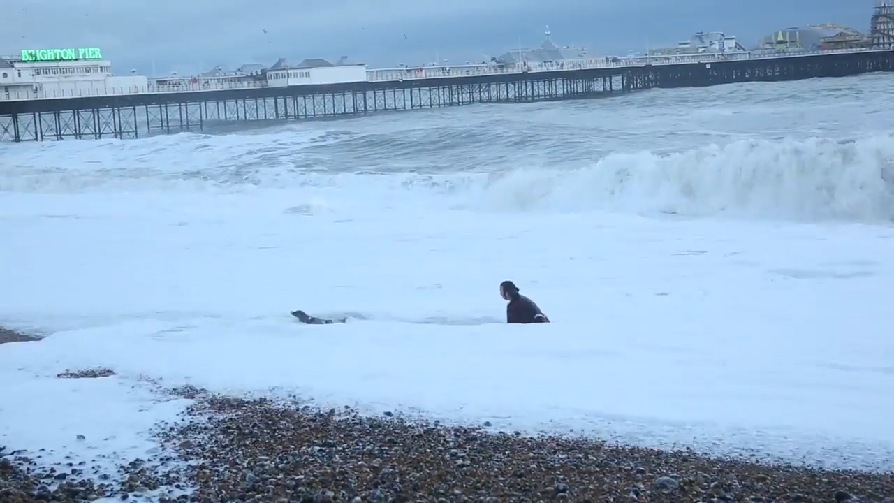 Woman runs into rough seas to save dog