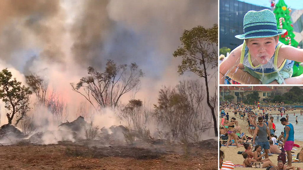 Total fire ban issued for parts of NSW and Queensland