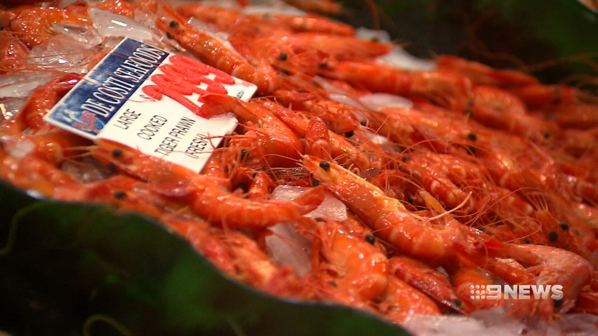 Prawn prices drop for the festive season