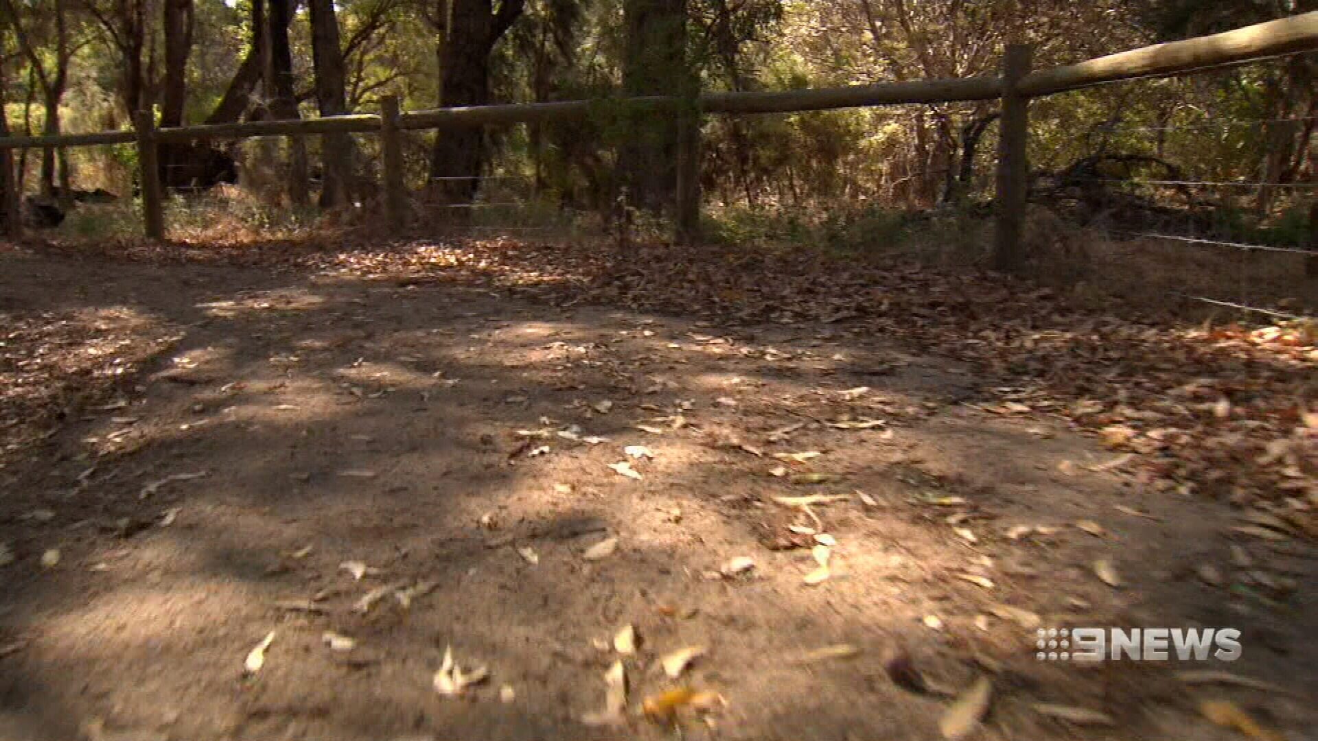 Thieves target severely disabled woman in Perth park