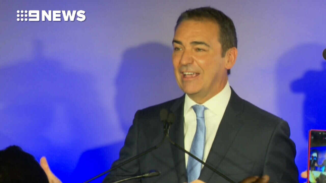 Steven Marshall wins government