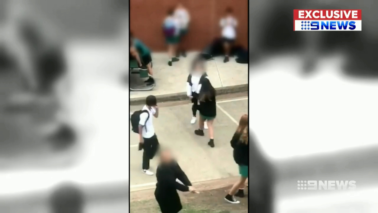 Teen girl 'pulls knife' during schoolyard fight