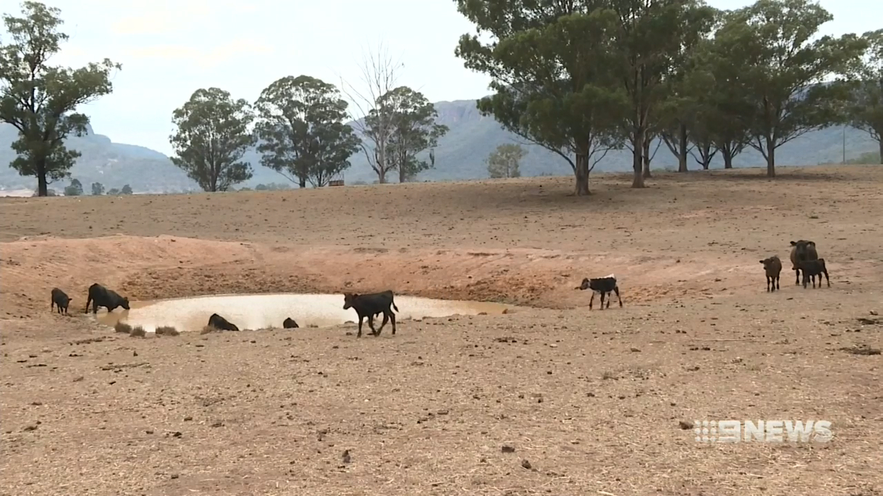 Riverina on the brink of drought