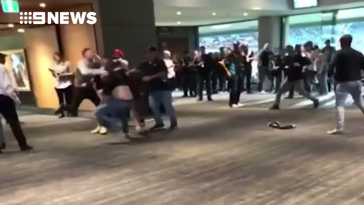 Violent brawl breaks out at Adelaide Oval