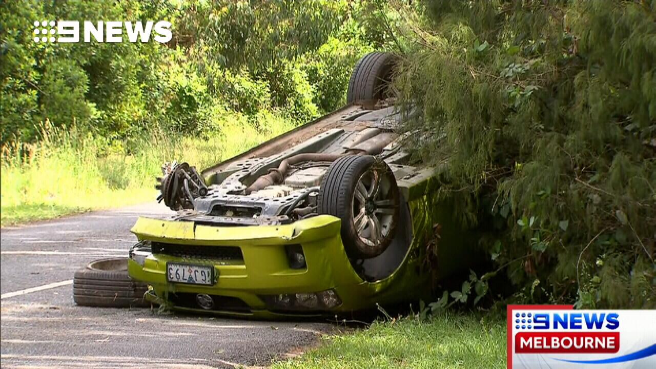 Man admits to causing crash that killed dogwalker