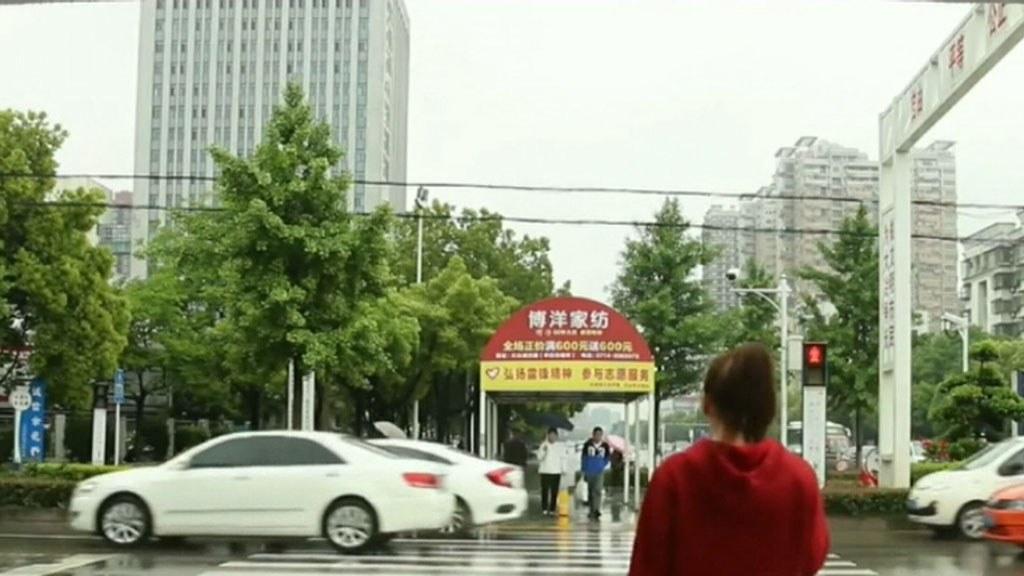 China's war on jaywalkers