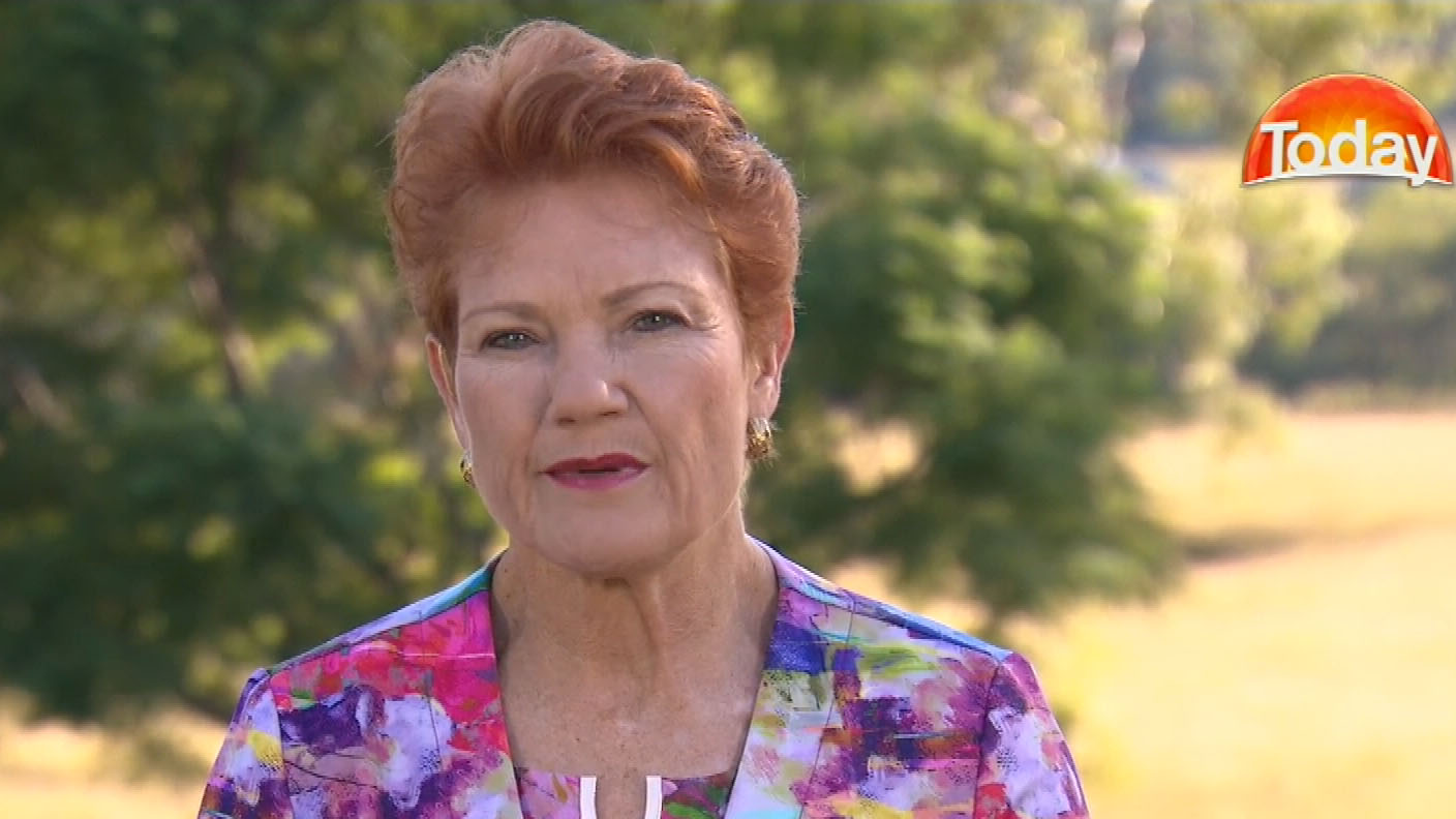 Pauline Hanson claims foreign interference in citizenship poll