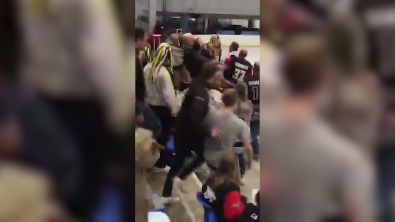 Aussie ice hockey chairman in fan brawl