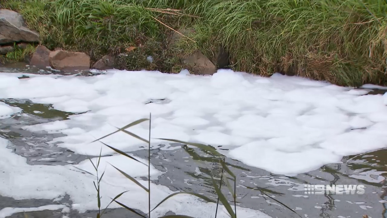 Warning for residents after pollution spill in Dandenong Creek