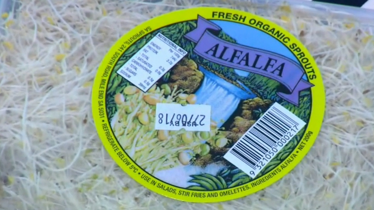 Alfalfa sprouts linked to salmonella outbreak