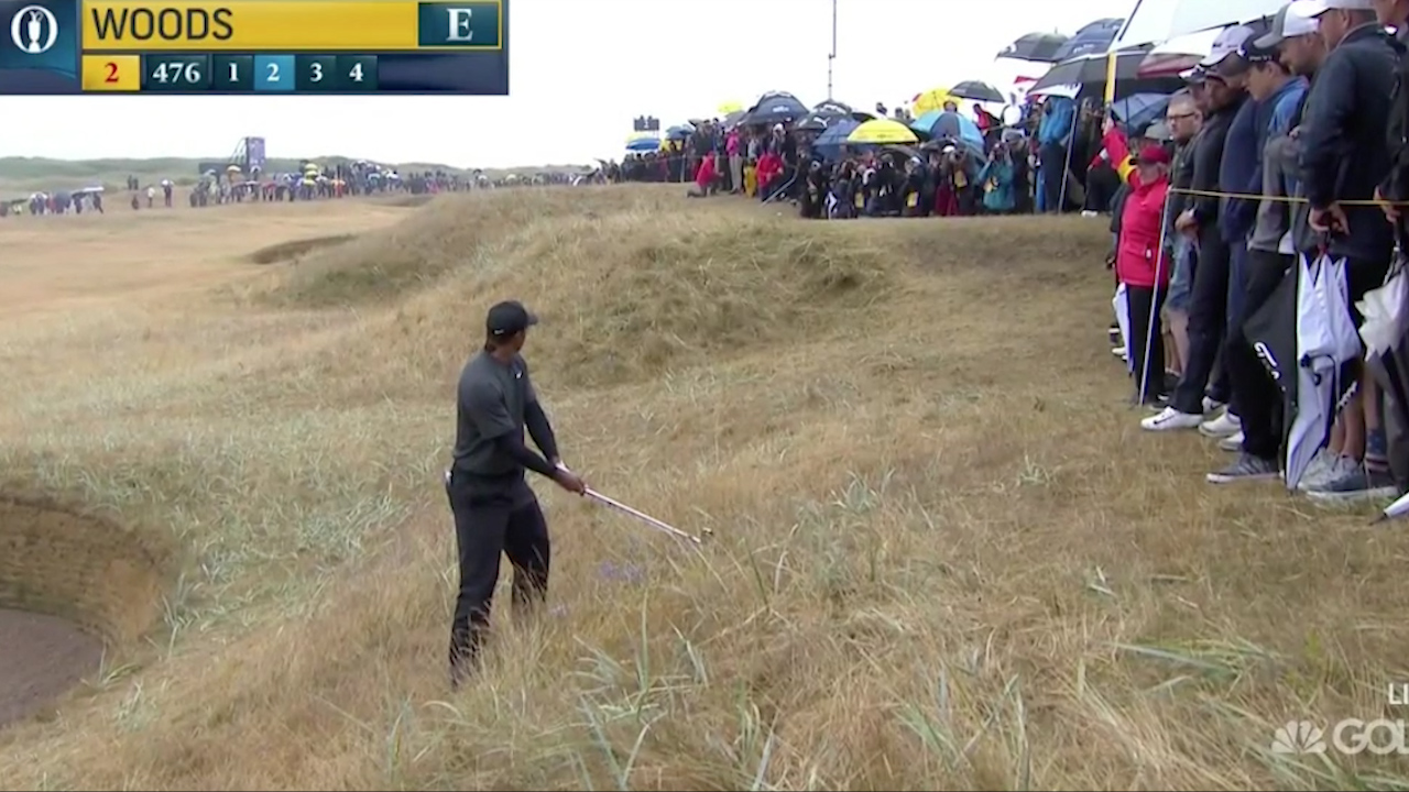 Tiger hits shot straight into gallery