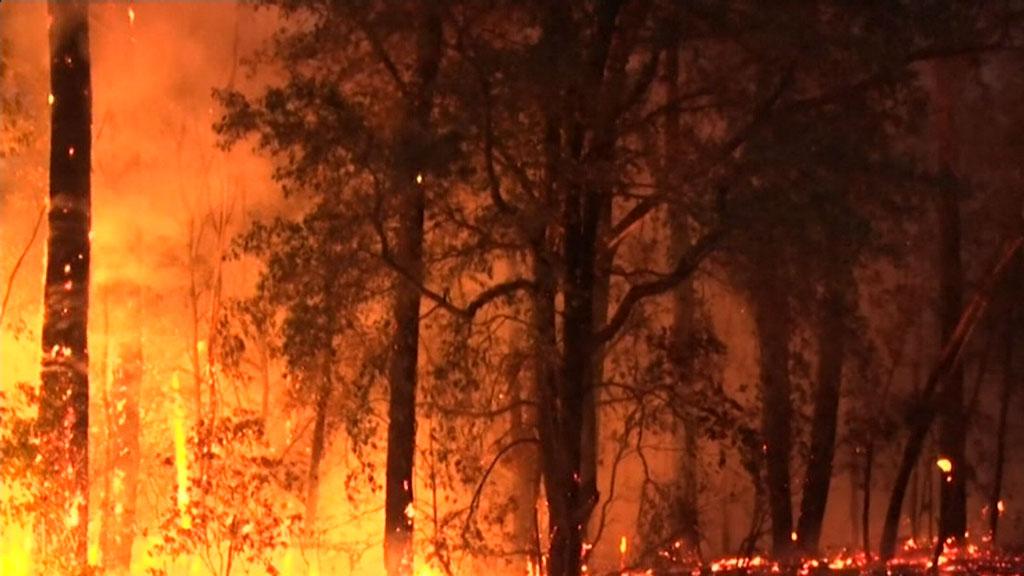 Rural firefighters battle bushfires