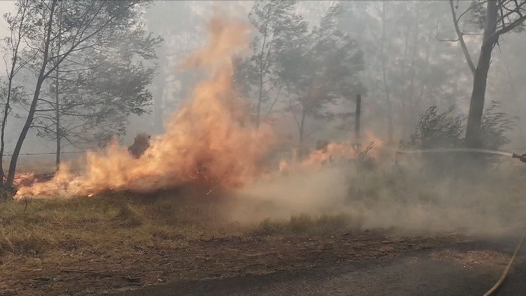 Fires burn across NSW, total fire ban for Queensland