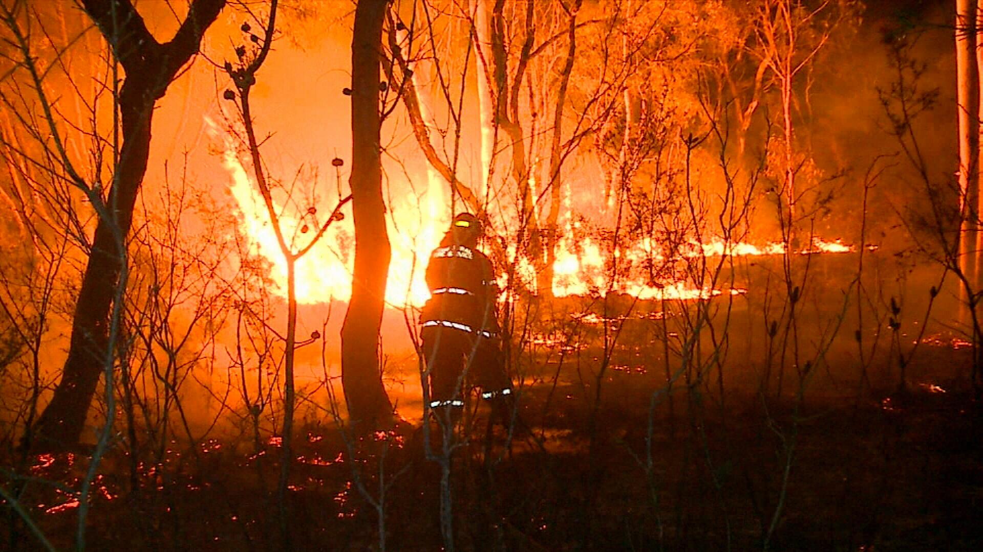 Bushfires threatening Sydney