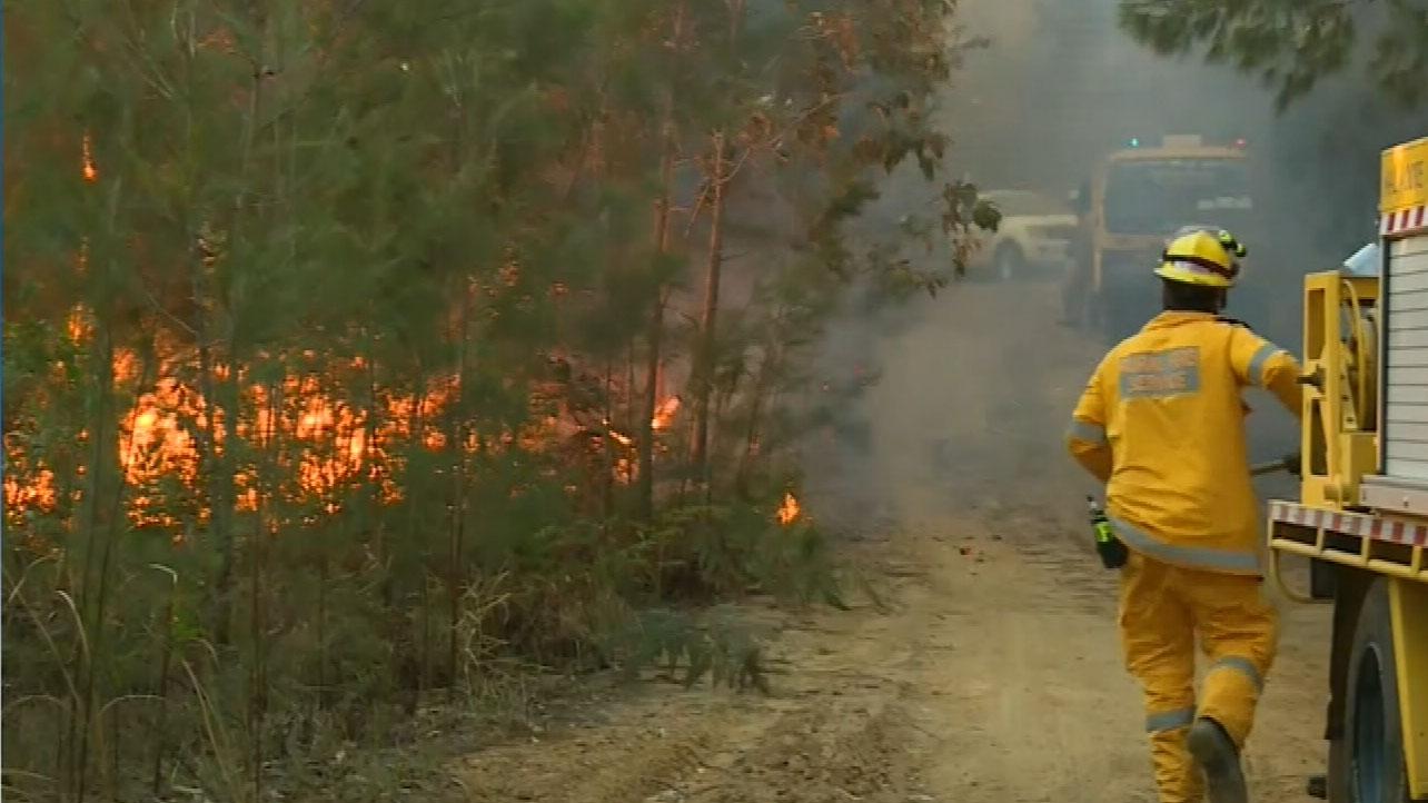 Most of Queensland facing high bushfire danger