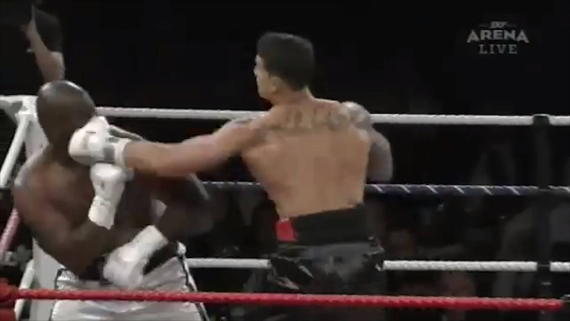 SBW knocks out Tillman