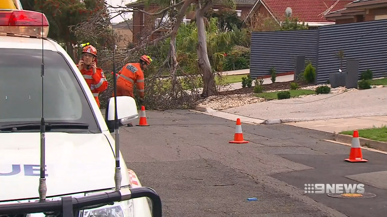 South Australia battered by storms
