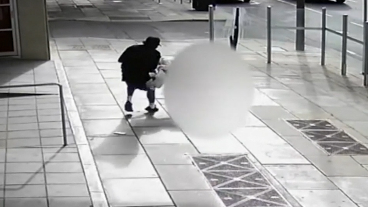 Police release video of bag snatcher