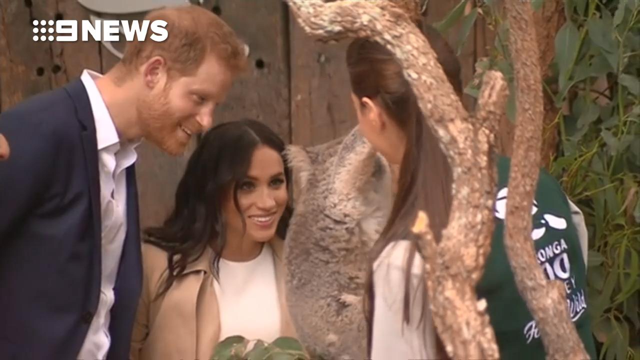 Prince Harry and Meghan meet a Koala at Taronga Zoo