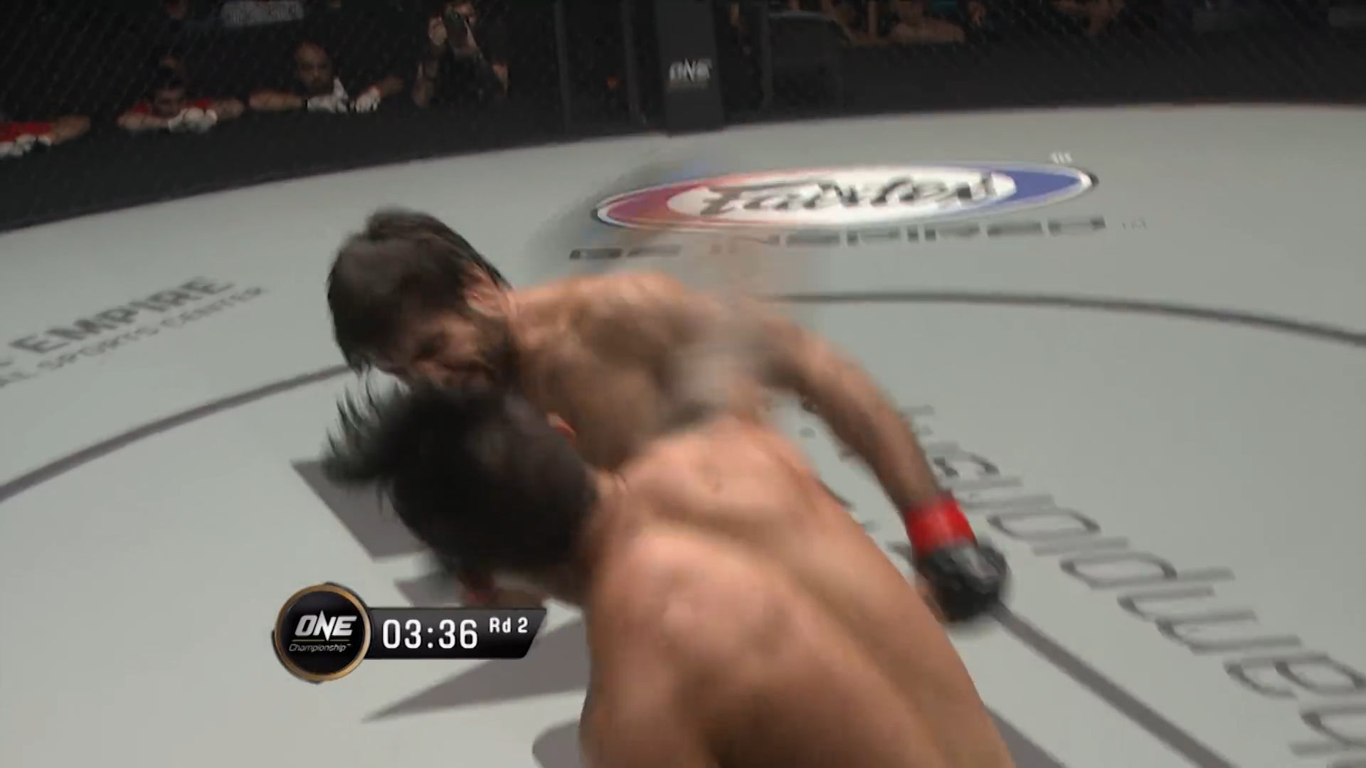 Nguyen Knocks Out Gafurov