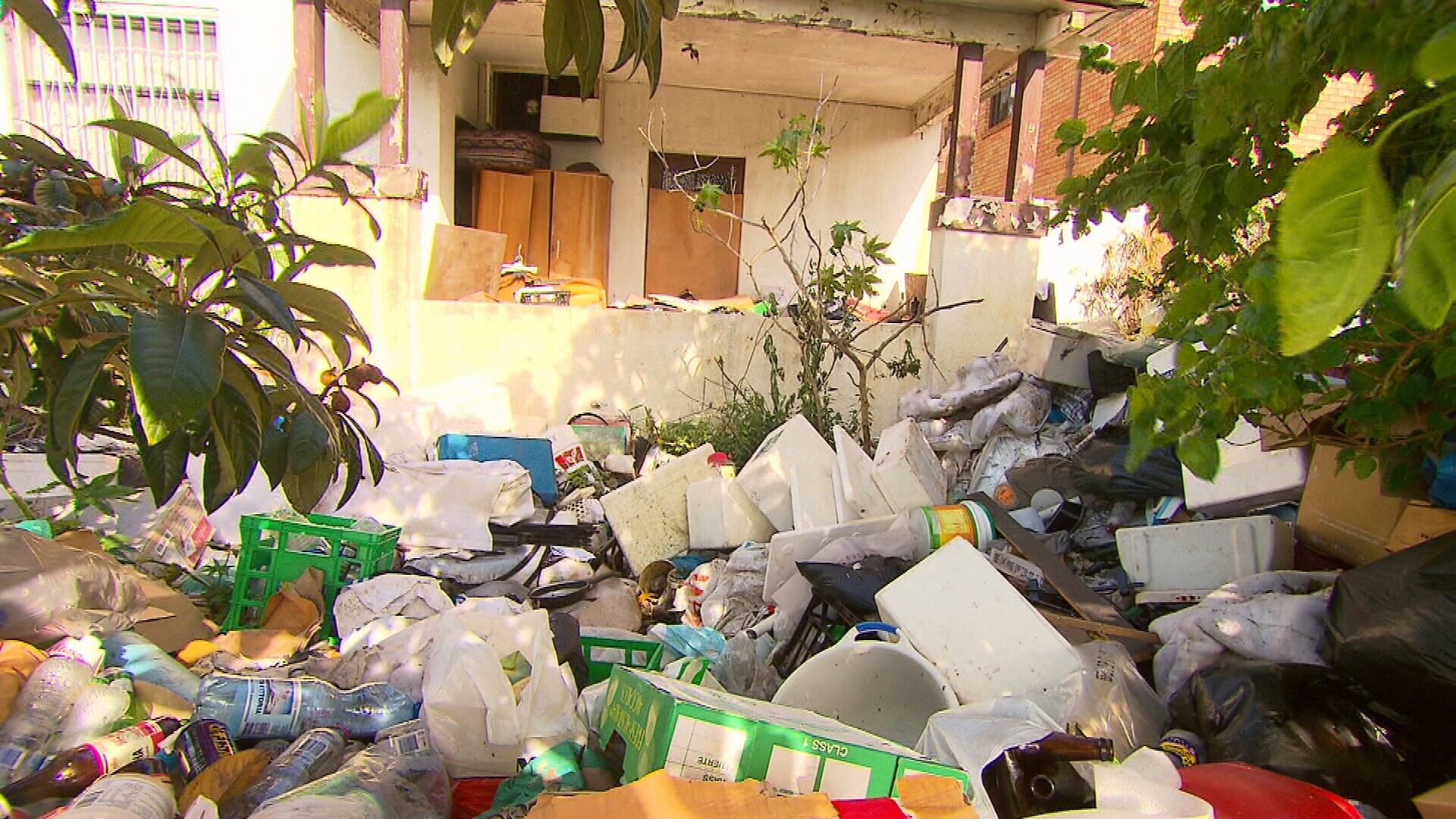 Council could win against Bondi hoarder house