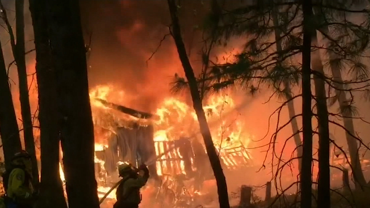 California wildfires claims 31 lives