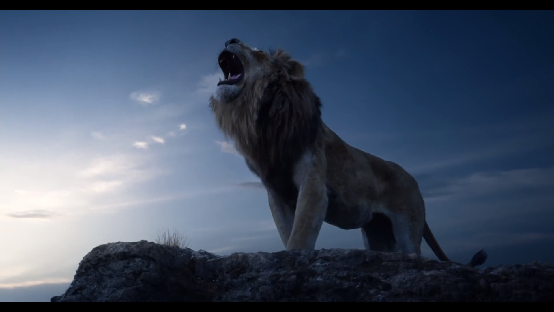 The Lion King Live Action Movie Teaser Trailer And Australian
