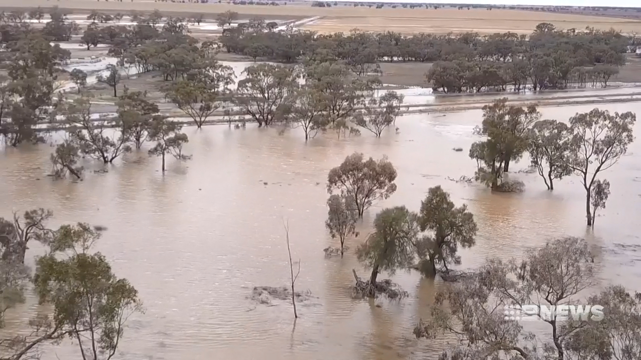 Mallee town of Birchip underwater